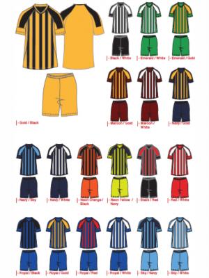 Locally Manufactured Soccer Kit - Argentina Design